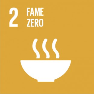 Sustainable_Development_Goals_IT_RGB-02-1-312×312