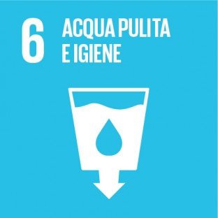 Sustainable_Development_Goals_IT_RGB-06-312×312