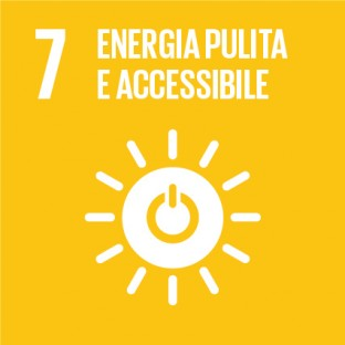 Sustainable_Development_Goals_IT_RGB-07-312×312