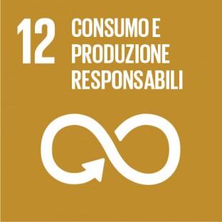 Sustainable_Development_Goals_IT_RGB-12-312×312