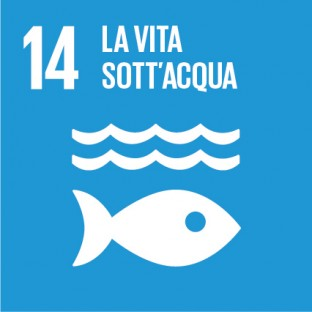 Sustainable_Development_Goals_IT_RGB-14-312×312
