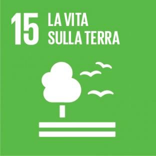 Sustainable_Development_Goals_IT_RGB-15-312×312
